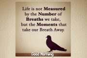 Life is measured by moments