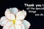 thank you for all special things