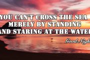 You can't cross the sea by standing and staring