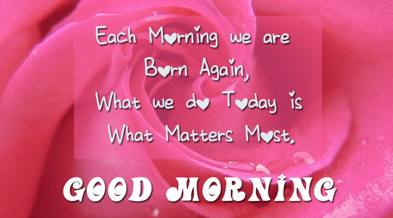 Each morning we are born again