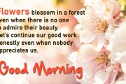 Flowers blossom in a forest