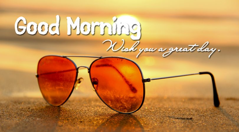 wish you a great day