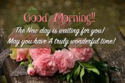 The New day is waiting for you