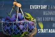 every-day-is-a-new-beginning-take-a-deep-breath-and-start-again