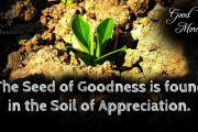 The seed of goodness is found in the soil of appreciation