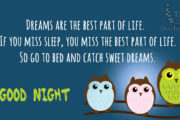 dreams-are-the-best-part-of-life