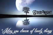 may-you-dream-of-lovely-things-and-wake-to-find-them-real