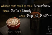 what-on-earth-could-be-more-luxurious-than-a-sofa-a-book-and-a-cup-of-coffee