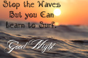 You cannot stop the waves but you can learn to surf