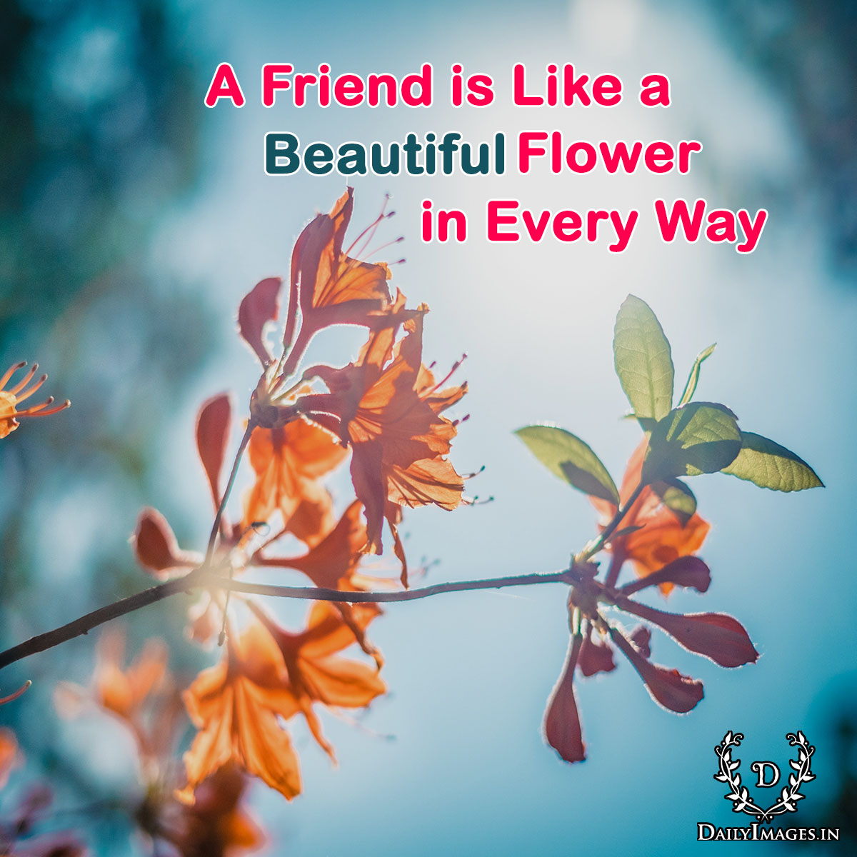 A friend is like a flower beautiful in every way daily images izmirmasajfo