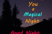 Whishing you a Magical night...Good Night