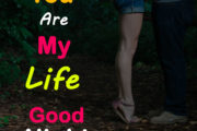 You Are My Life, Good Night