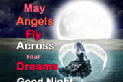 May Angels Fly Across Your Dreams, Good Night