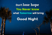 Don't lose hope You never know what tomorrow will bring Good Night