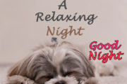 Have a Relaxing Night